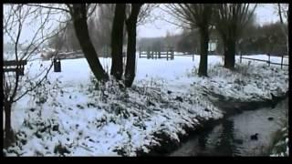 preview picture of video 'Aniche , Rieulay , Mont Noir , Douai, Lille ... Les ch'ti sous la neige'