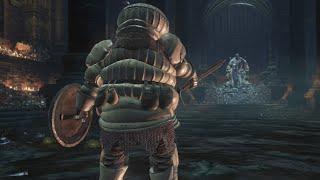 Dark Souls III - Yhorm The Giant W/ Siegward Of Catarina - NO DAMAGE (NG+)