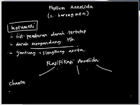 Írja meg a parazita taxonómiáját latinul