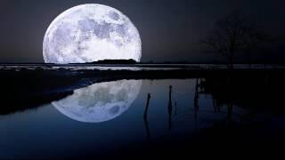 اغاني حصرية انشودة خيم الليل فناديت الهــي (ربي سبحانك) للشيخ مشاري العفاســي تحميل MP3