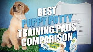 Best Puppy Potty Training Pads Review and Testing (2018)