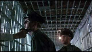 Dillinger (1973) Video
