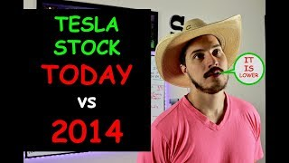 Wall Street Has Given Up On Tesla Stock. Have I Given Up?!