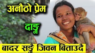 अनोठौ प्रेम - बाँदरका लागि भनेर बिहे नगरेरै बसेकी युवती भेटीइन - बाँदर सँगै जीवन बिताउछु    Kamla
