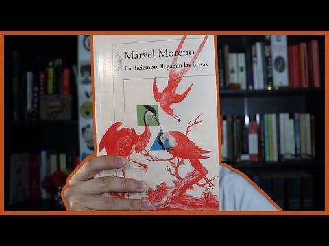 Machismo, calor y Barranquilla | En diciembre llegaban las brisas — Marvel Moreno