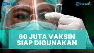 60 Juta Dosis Vaksin Covid-19 Siap Digunakan, Menkes: Kita Harus Kejar Provinsi di Atas 20 Persen