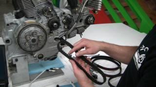 Ducati Monster 796,797,696,1100/Scrambler Timing Belt