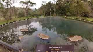 preview picture of video 'Thailand 3 Thaton-Kok rivier-Chiang Rai-Mea Sai (408MB)'