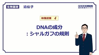 生物基礎遺伝子4シャルガフの規則15分
