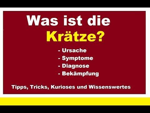 Die Würmer die Symptome beim Erwachsenen die Symptome und die Behandlung das Medikament