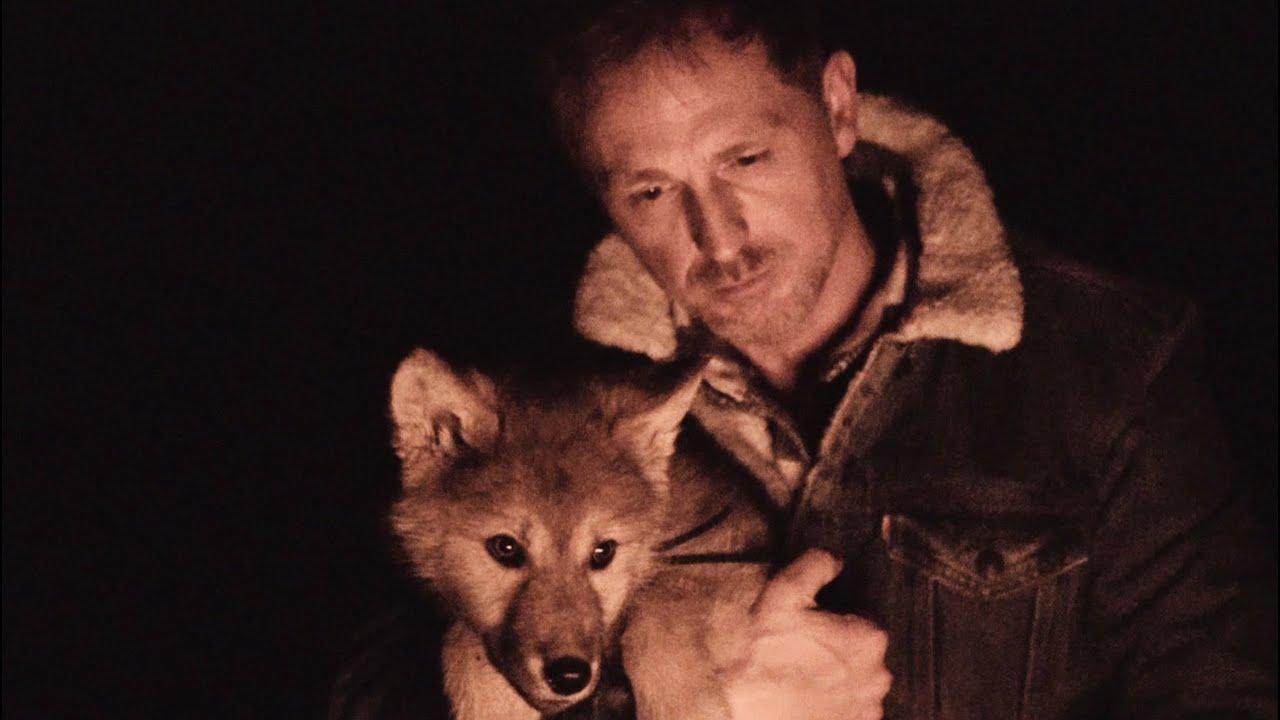 Jörg Bausch – Wie ein Wolf in der Nacht (2019)