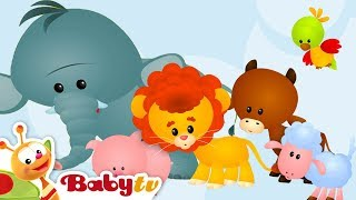 Animal Sounds and Names for Kids & Toddlers | BabyTV