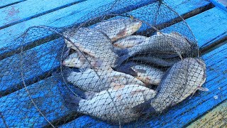 Места в краснодарском крае лучшие для рыбалки