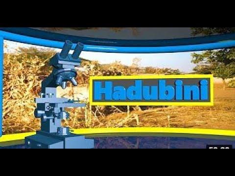 #TBCLIVE: HADUBINI JUNI 05, 2021   SAA 2:00 - 3:00 USIKU
