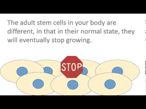 Colorado Stem Cell Therapy hqdefault - Let's Talk Stem Cells Part 6: Stopping Growth on Contact