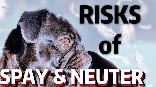 THE RISKS OF NEUTER AND SPAY | THE TRUTH!!! | SCIENTIFIC & MEDICAL PROOF/EVIDENCE
