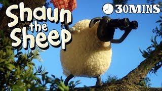 Download Video Shaun the Sheep - Season 3 - Episodes 11-15 [30 MINS] MP3 3GP MP4