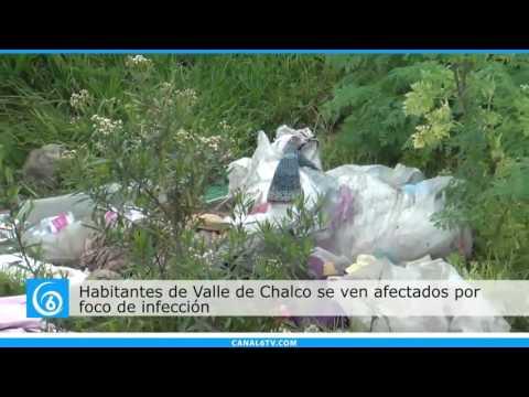 Habitantes de la colonia Humberto Vidal en Chalco, se ven afectados  por foco de infección