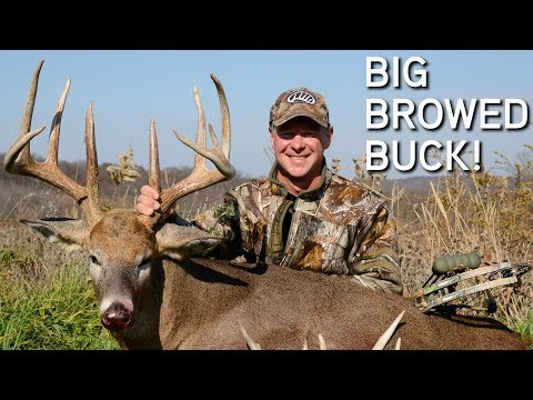 HUGE Brow Tine Buck! | Bowhunting the Rut