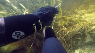 Подводная охота 2018г, апрель