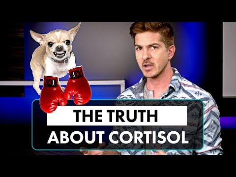 The Truth About Cortisol (Why You Don't Have Adrenal Fatigue)