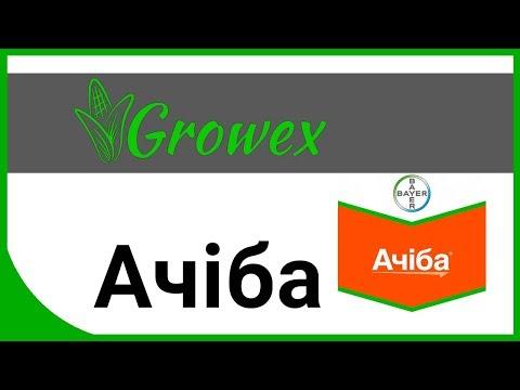 Ачиба