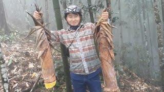 Hmong Global | Khawb Ntsuag Nyob Hav Zoov Loj Li Loj