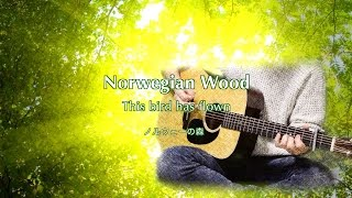 Norwegian Wood (This bird has flown) ノルウェーの森 - The Beatles karaoke cover