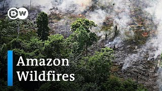 Amazon rainforest burning at a record rate | DW News