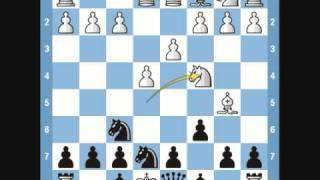 Chess Traps- Mortimer Trap