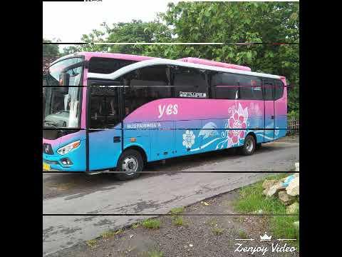 Bus pariwisata YES