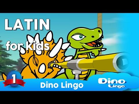Learn  Latin for kids - Animals - Online  Latin lessons for kids - Dinolingo