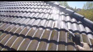 Certified SoftWash Roof Cleaning Fremont CA