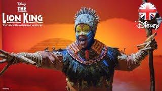 THE LION KING MUSICAL   NEW Trailer! 2018   Official Disney UK