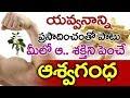 Benefits & Medicinal Uses Of Ashwagandha | Veda Vaidhyam #15 | TV5 News