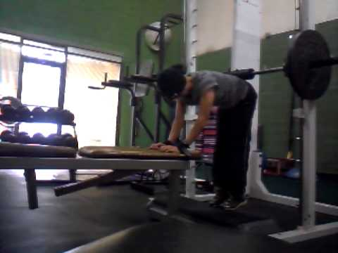 Donkey calf raise on smith machine