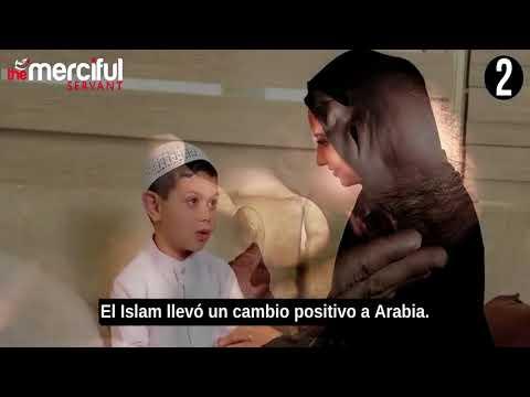 Top 5 Conceptos Erróneos Sobre El Islam