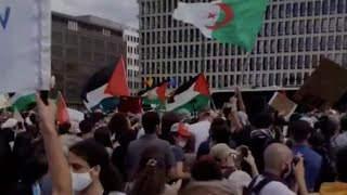 """Protestující v Bruselu volají po """"válce proti Židům"""""""
