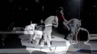 Lipizzaners- Zebra, This Town Needs Guns
