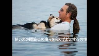 燃える涙千代の富士物語主題歌松山千春cover2016