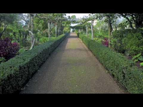 Palheiro Gardens - Jardins do Palheiro