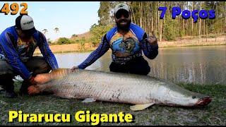 Pescaria com um exemplar com mais de 70 kilos - Fishingtur 492