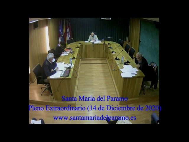Pleno Extraordinario (14 de diciembre de 2020)