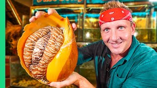 $10 Snail VS $120 Snail!!! Rare GIANT Seafood in Asia!!