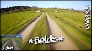 In The Fields // ONEPACK +DVR // FPV Drone // DrNopeFPV