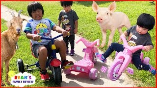 Kids Family Fun Trip to the Farm with Animals and Giant Slides!!