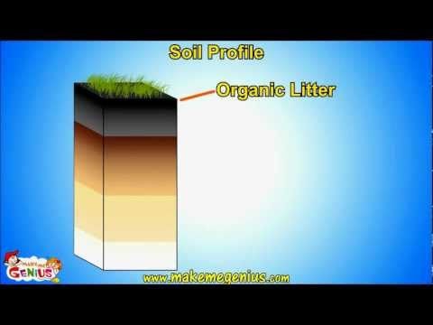 Soil Types \u0026 Soil Horizons (Profile ) Unit for Kids