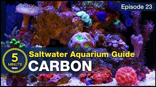 5 Minute Saltwater Aquarium Guide Episode #23 - Activated Carbon