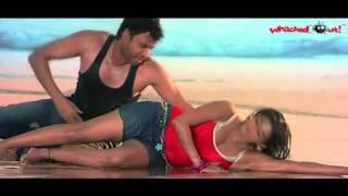 Raaj Full Sex Songs HD   Andhamtho Pandemga   Sumanth, Priyamani   Vimala Raman hot Kisses