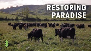 Farming Sustainably with Regenerative Agriculture | Restoring Paradise